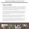 Policy Brief; Perjuangan Mengembalikan dan Memulihkan Hak-Hak Masyarakat Hukum Adat Rejang di Kabupaten Lebong