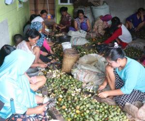 Pandemi Covid-19 dan Ketahanan Sosial Masyarakat Pedesaan Bengkulu
